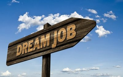 המדריך למציאת מקום עבודה